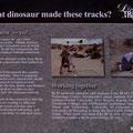 Red Gulch Dinosaur Tracksite