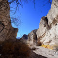 Big Bend NP, Tuff Tanyon