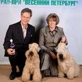 """выставка  5.6.12. """"Весенний Петербург"""" в Ледовом дворце - ЛПП"""
