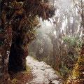 Inka-Trail, Peru | Foto: Klaus Kufeld