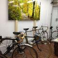 季節に合ったサイクリングの提案をパネル展示。