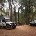 Nachtplatz im Boranup Forest