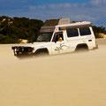 Gandi verschwindet in den Yaegerup Dunes