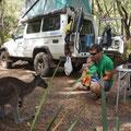 Kevin's erster Kontakt mit einem Kangaroo