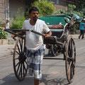 anstatt Pferde ziehen die Inder die Kutschen, unglaublich harte Arbeit wenn man bedenkt wie heiss es ist.
