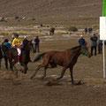 ...dieses Pferd war der Star des Tages! Der Reiter fällt beim Start hinunter... das Pferd läuft Runde um Runde ohne Reiter weiter und gewinnt sogar das Rennen, leider wurde es jedoch disqualifiziert!! Schaaade!! Das Publikum tobte vor Lachen!!:-)
