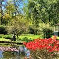De tuin van de villa