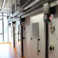 Fliegenkammern mit automatischen Türen