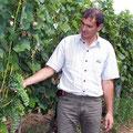 Weingut Evinor, Tokaj