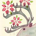 赤花のトナカイ
