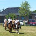... Vorsicht Pferde