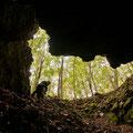 Grotta di Strazzatrippa, Acerno (SA)