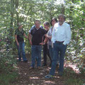 Herrliches Wandern auf Waldwegen
