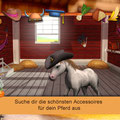 Kleines Baby Pferd