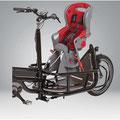 Pfau-Tec Carrier Lasten e-Bike Zubehör Kindersitz und Halterung