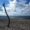 Wilder Strand am Westrand des Darß