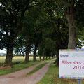 """Die """"Allee des Jahres 2014"""" in Sicht- und Fußweite des Ferienhauses"""