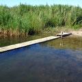 Die nicht einsehbare Badestelle ermöglicht auch Plantschen im flachen Wasser