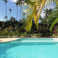 Tropical garden and pool in codominium apartment Las Terrenas