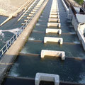 宮中ダムの魚道