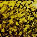 Gold • 1983 • Acryl & Blattgold auf Leinwand • 80 x 60
