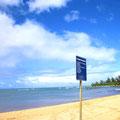 英会話のPURE Meg in Hawaii