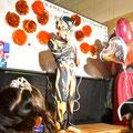 英会話のピュア 2014年ハロウィンパーティー