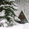 ein wunderschönes Schneebild