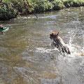 Und noch einmal ein Sprung von Baya ins Wasser.