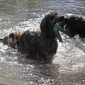... und am Ufer lauert ihr dann Wegelagerer Fuego auf, um ihr das Spielzeug zu klauen.