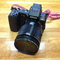 Nikon1V2 10倍ズームキット