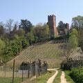 Il castello visto dalla Valdemagna