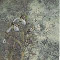 Schneeglöckchen 24 x 18 cm