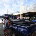 人数多いとボードも荷物も満載~。トラック助かります。