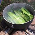 Cabuyablaetter kochen