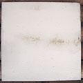 Öl, Grafit auf Leinwand, 40 x 40 cm (Spuren der Erdlegung, Brilon 2014)