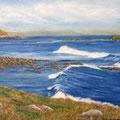 l'Ile aux Marins 2010