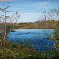 L'étang de l'Anse à Pierre 2010