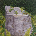 souche d'arbre 2009