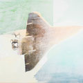 schemen1, 2013, Décalcage on MDF, 132 cm x 207 cm  >original available