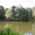 Natursee im Dreiländergarten
