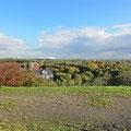 Panorama mit Blick auf die Veltins-Arena im Hintergrund