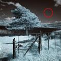 Weißabgleich auf den Himmel - Quelle:http://www.rosalinse.de/fw_ir_03.html