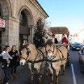 Promenade en calèche offerte par le Marché de Noël