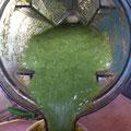 Grünes Getränk
