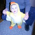 Our first little duckling at 4 months old -- 2007