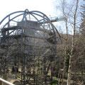 so grüßt der Pfad , hier kann man die einzelnen Vegetationsebenen des Harzer Waldes entdecken