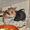 Kiki & Bernadette