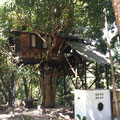 Reserva Biologica Caoba - Tree House