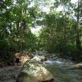 Manzanares river @ Reserva Biologica Caoba
